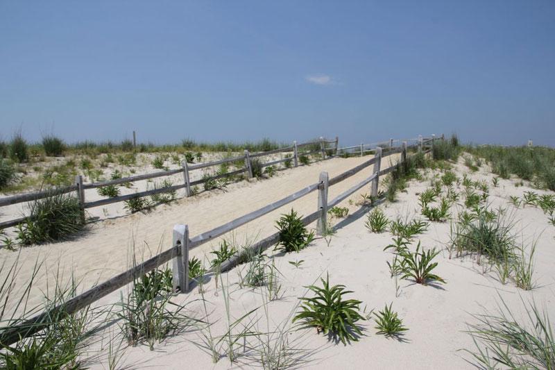 cm_Point-State-Park-Dunes